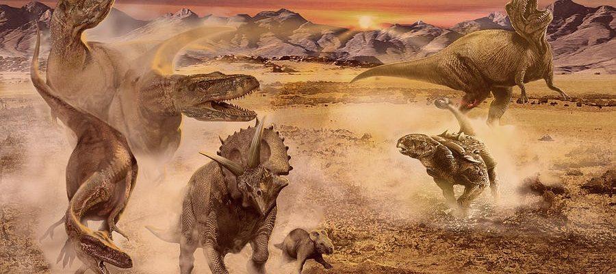 Доступ к базе данных Динозавров